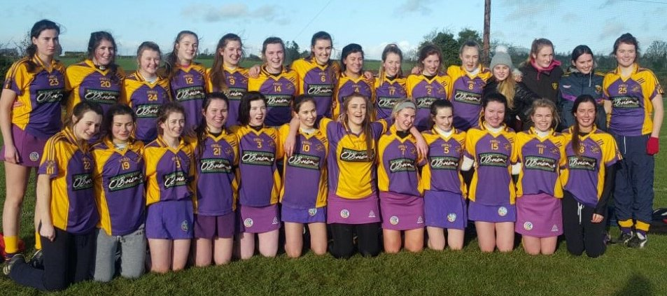 Camogie Team1